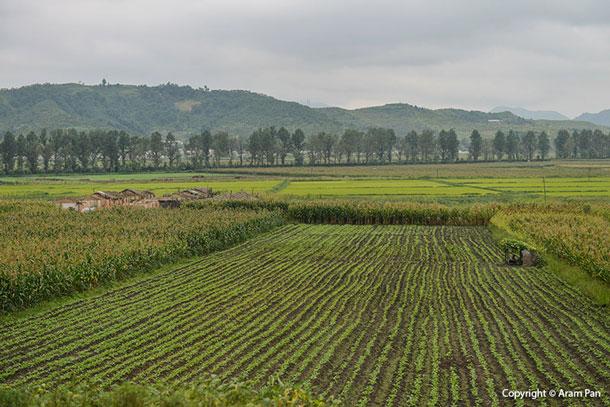 Aram Pan   The North Korean Photography Project