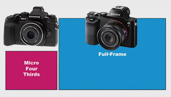 About same weight, same size, different sensors. What Micro Four Thirds advantage?