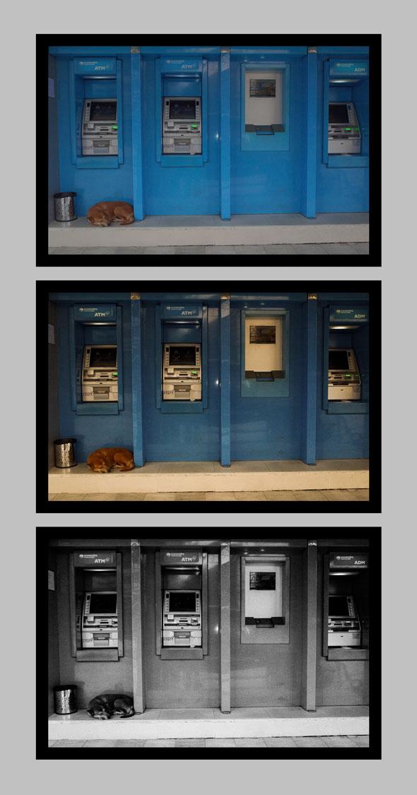 Dog at ATM | Ronn Aldaman