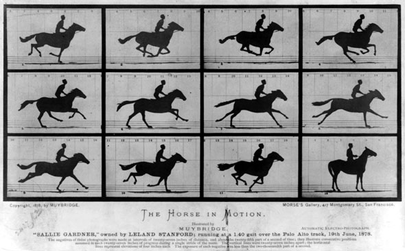 Eadweard Muybridge's famous The Horse in Motion