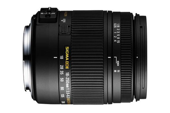 The Sigma 18-250mm F3.5-6.3 -- great walk-around and all-in-one zoom lens.