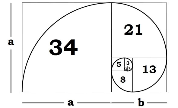 "The ""divine proportion"" of the golden ratio is close to film's 36mm x 24mm equivalent..."
