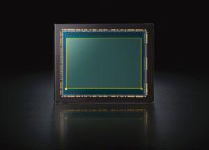 Sony A7S sensor -- the sensor everyone wants.