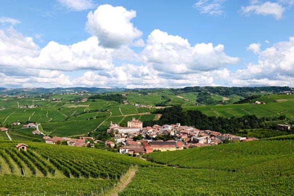 Barolo -- Piemonte, Italy | Daniel Kestenholz