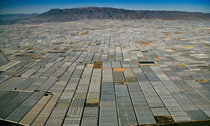 "Greenhouses Grow Greenhouses As far as the eye can see, greenhouses cover the landscape in Almeria, Spain ""We are slaves in the sense that we depend for our daily survival upon an expand-or-expire agro-industrial empire – a crackpot machine – that the specialists cannot comprehend and the managers cannot manage. Which is, furthermore, devouring world resources at an exponential rate."" (Edward Abbey) 
