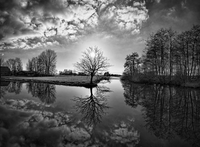 Late Sun in a Dutch Landscape | Karel van Wolferen