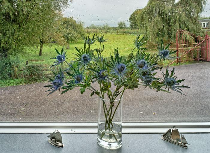 My Kitchen Window | Karel van Wolferen
